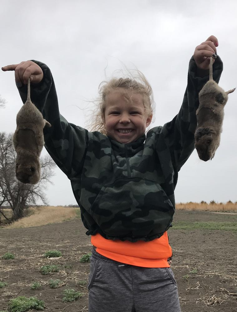 Emerson trapping pocket gophers